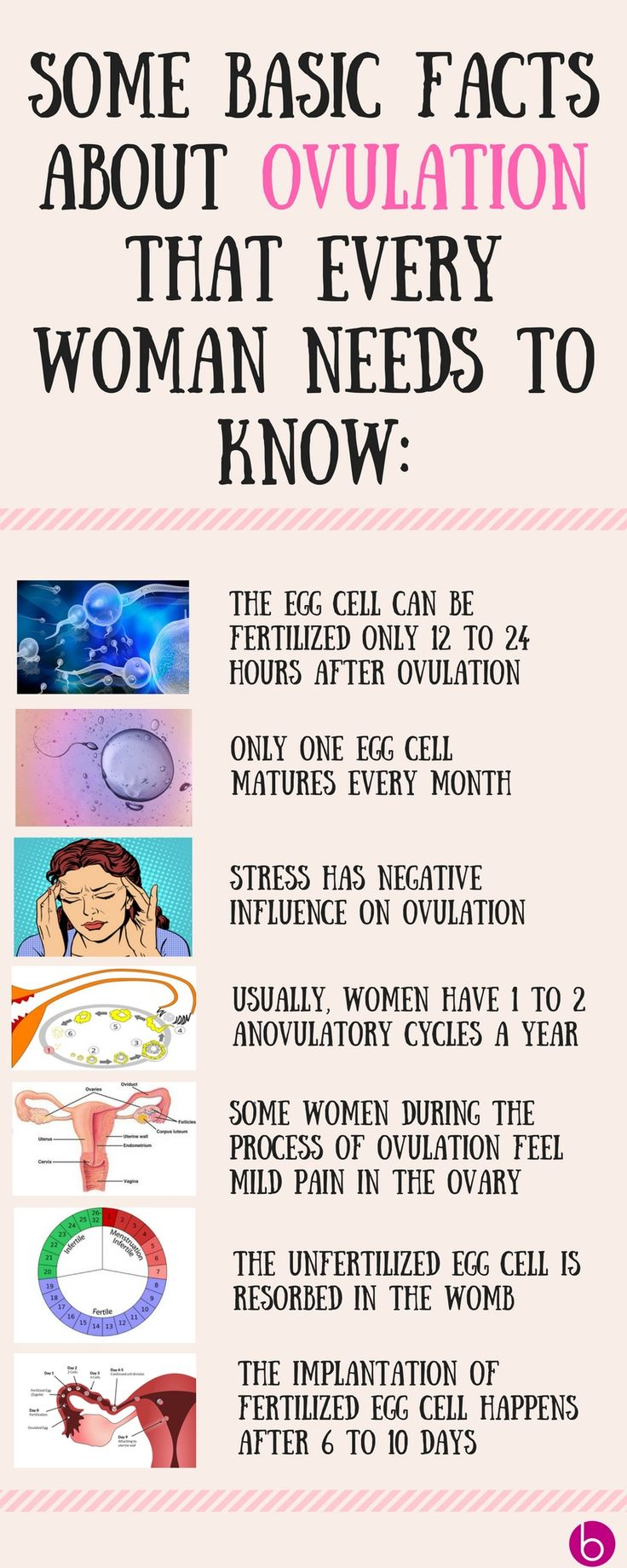 Some basic facts about ovulation... Read more http://beautyisneverenough.com/life-stages/ovulation-symptoms-fertile-days/
