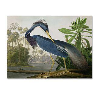 John James Audubon 'Louisiana Heron' Canvas Art | Overstock.com Shopping - Top Rated Trademark Fine Art Canvas
