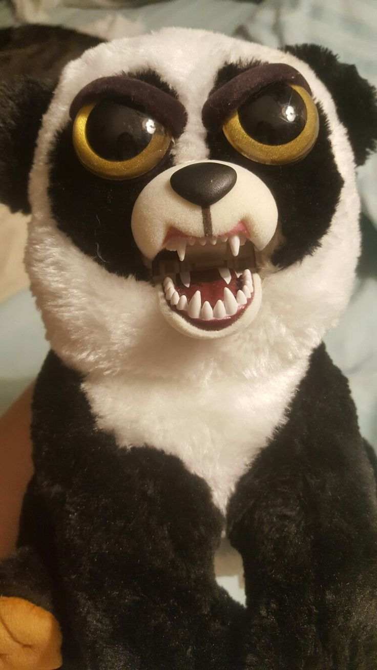 1000  images about my panda obsession 2 on pinterest