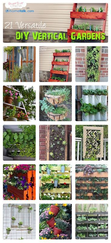 21 DIY Versatile Vertical Gardens   by Ginger Snap Crafts blog! If our life ever progresses...and we can get a yard....or something.