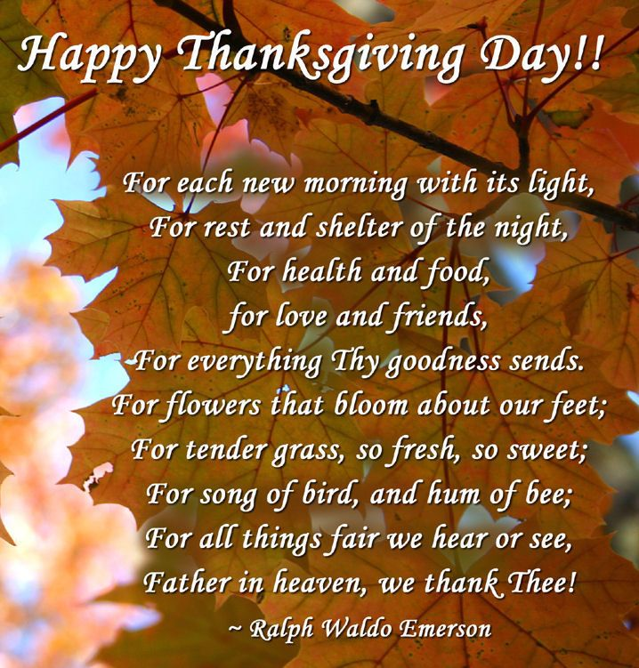 Happy Thanksgiving Day Quote