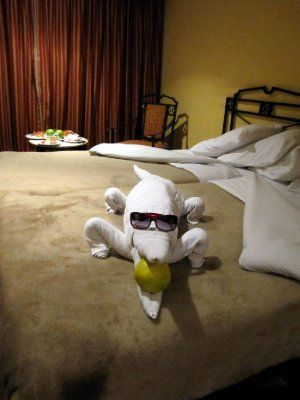 Alligator with Cool Shades -  Towel Folding