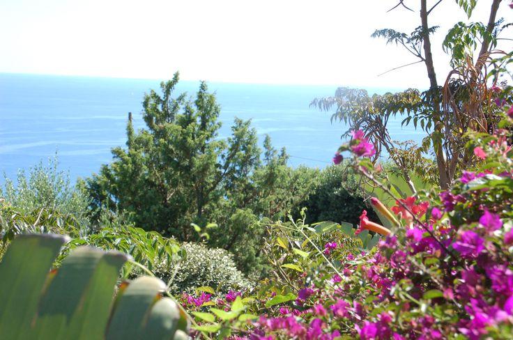 Springtime on the Riviera of Flours sea