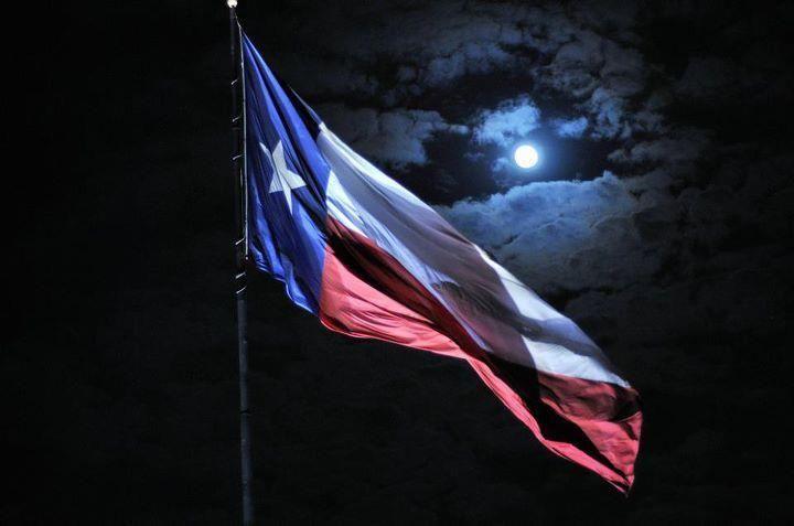 Texas pride wallpaper google search texas pinterest google texas and search - Texas flag wallpaper ...