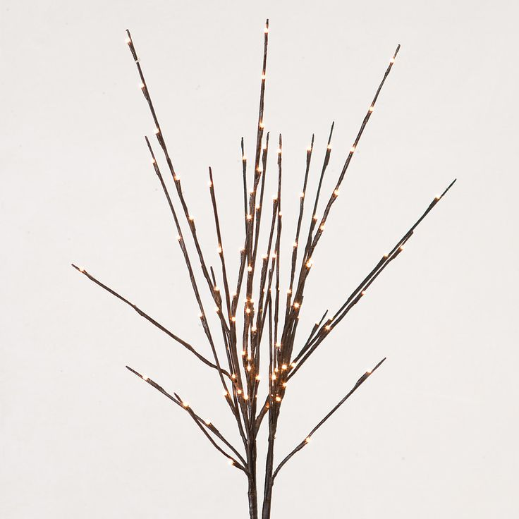 "Like fresh cut branches, these willow twig lights add natural illumination to your indoor décor alone or woven into a planter of your favorite blooms.- Set of three- Incandescent lights- Indoor use only- One 24 volt transformer with each unit- 18' cord- Imported36""H"