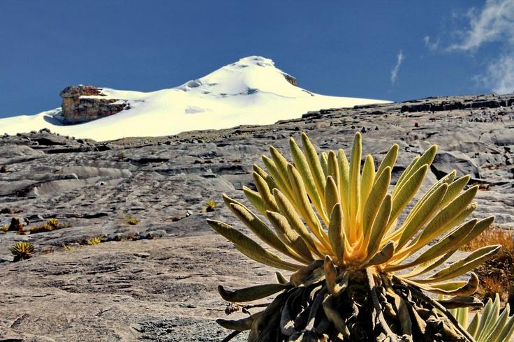 Sierra Nevada del Cocuy #colombia