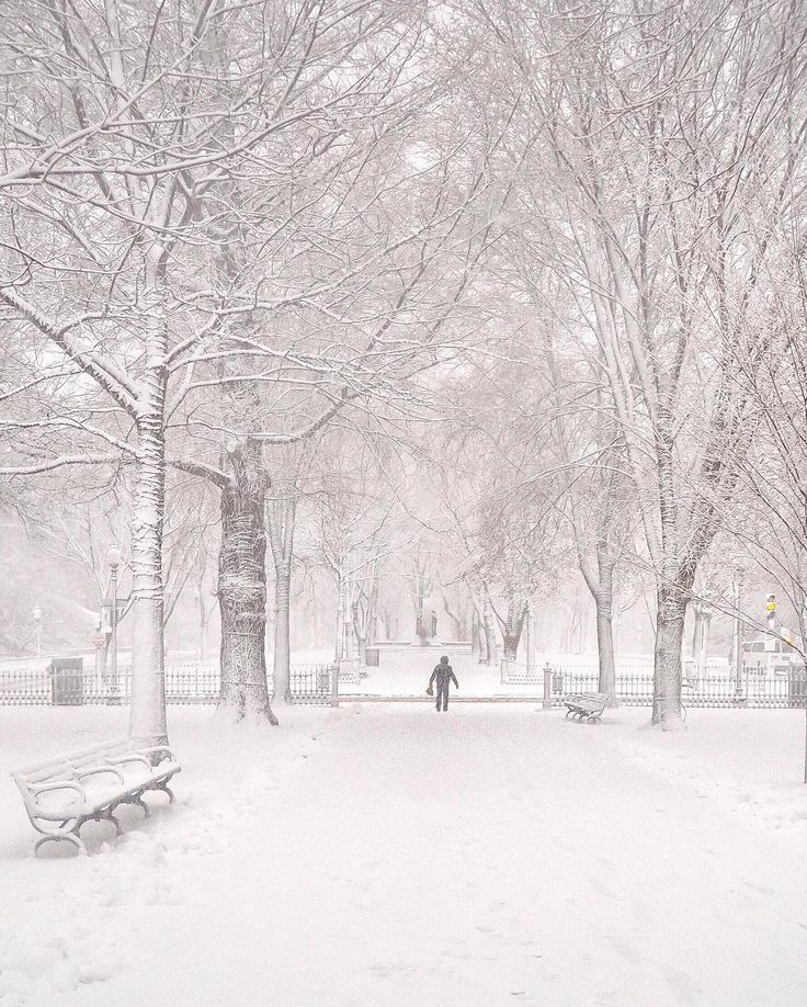 Snow long winter! (Boston) by @heythereney