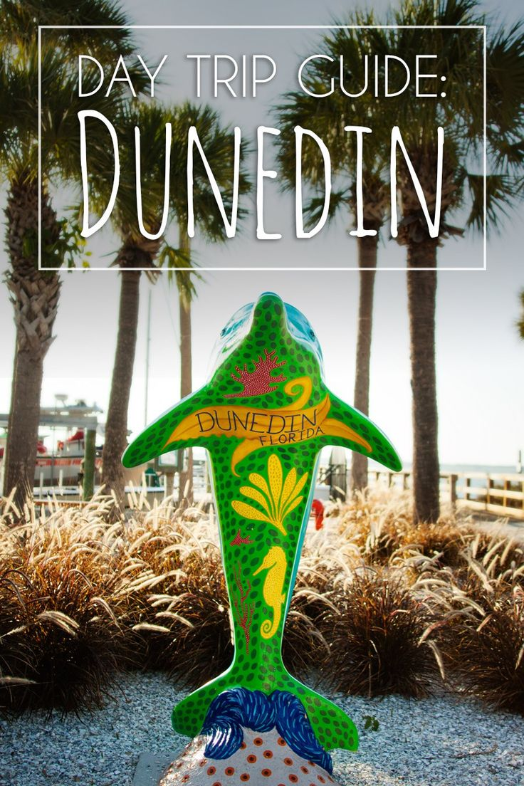 What to do, where to eat, and tips for a great day in Dunedin, FL.