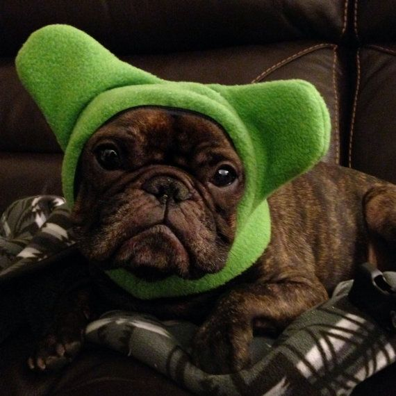 french bulldog hat bathat by snorfindustries frenchies pinterest 3965