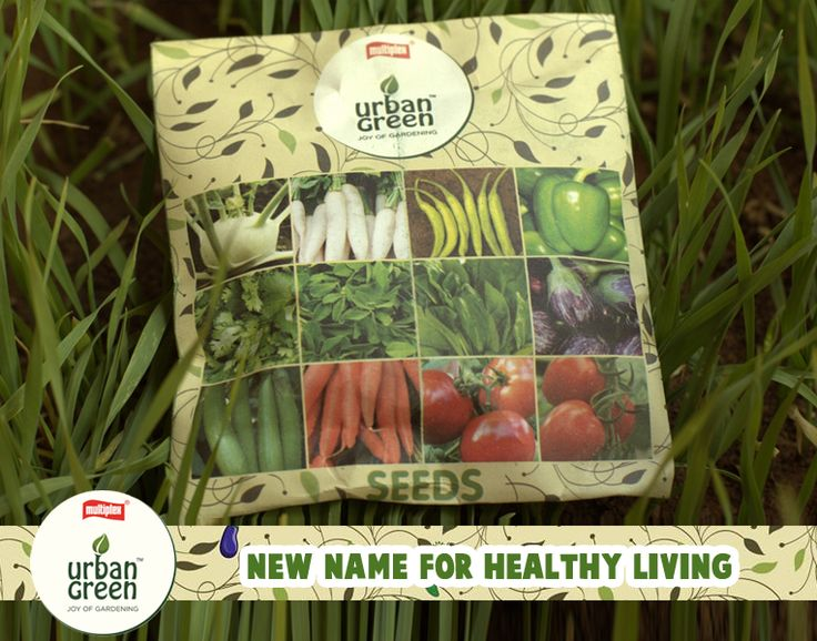 With a packet of Multiplex Urban Green #seeds, you and the kids can give birth to a whole range of interesting #flowers and #veggies & you can be sure that your plants have been raised organically from first to last. Click here for more - goo.gl/OqoT9S
