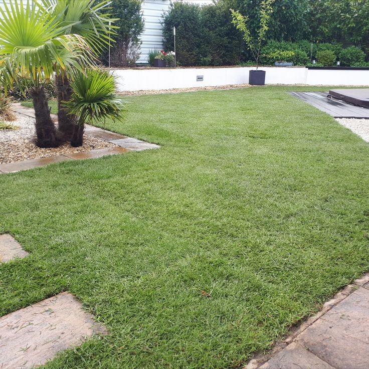 Ergebnis Rollrasen Verlegen In 2020 Rasen Garten