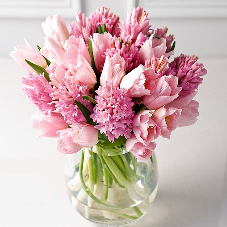 Expensive Birthday Flowers: Best 25+ Hyacinth Bouquet Ideas On Pinterest