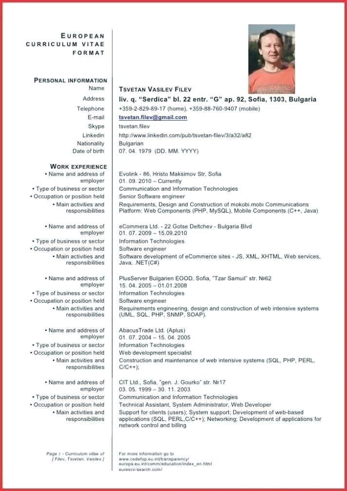 European Cv Template Doc Barrest Cv Template Word Cv Template Download Cv Template