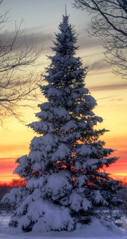 Sunset on Lake Nokomis in Minneapolis, Minnesota • photo: Sue.Ann on Flickr