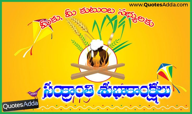 Here is a 2016 Happy Snakranti Quotations for Family Members, Sankranti 2016 Quotes and Greetings Pictures, Whatsapp Sankranti Telugu Wishes, Telugu New 2016 Sankranti Greetings and Messages, Happy Sankranti Top 2016 Telugu HD Wallpapers, Telugu Facebook Sankranti Messages.