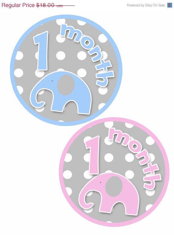 ON SALE Monthly Milestone Stickers Girl Boy Baby by PurplePossom, $17.46