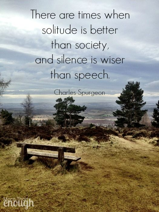 There are times when solitude is better than society, and silence is wiser than speech. ~Charles Spurgeon