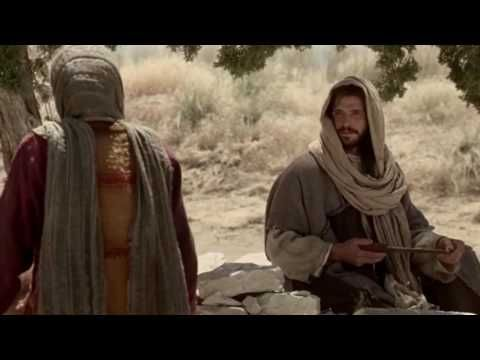 """La fuerza de Cristo te creó, la debilidad de Cristo te recreó. La fuerza de Cristo ha llamado a la existencia lo que no existía. La debilidad de Cristo salvó de la perdición lo que ya existía. Por su debilidad alimenta a los débiles, como la gallina alimenta a sus polluelos: """"¡Cuántas veces he querido reunir a tus hijos como la gallina reúne a sus polluelos debajo de las alas, y no habéis querido"""" (Lc 13,34)...."""