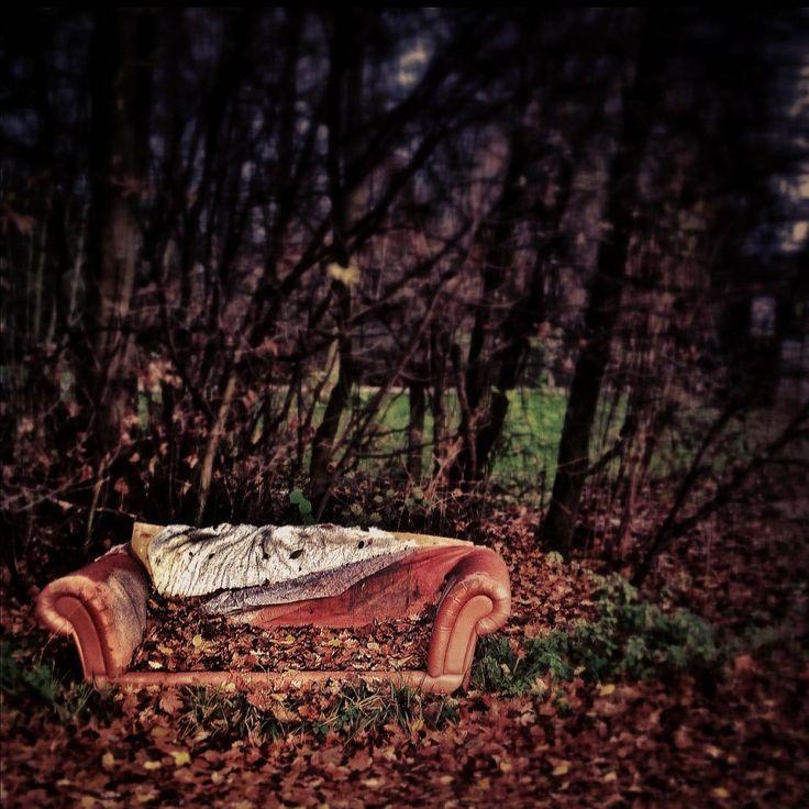 Sofa rotting outside