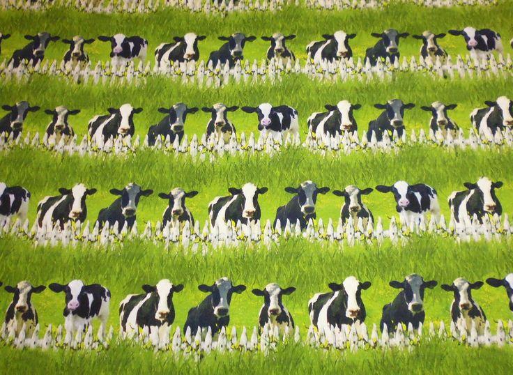 Digitaldruck Jersey - Tiere - Kühe schwarz-weiß am Zaun
