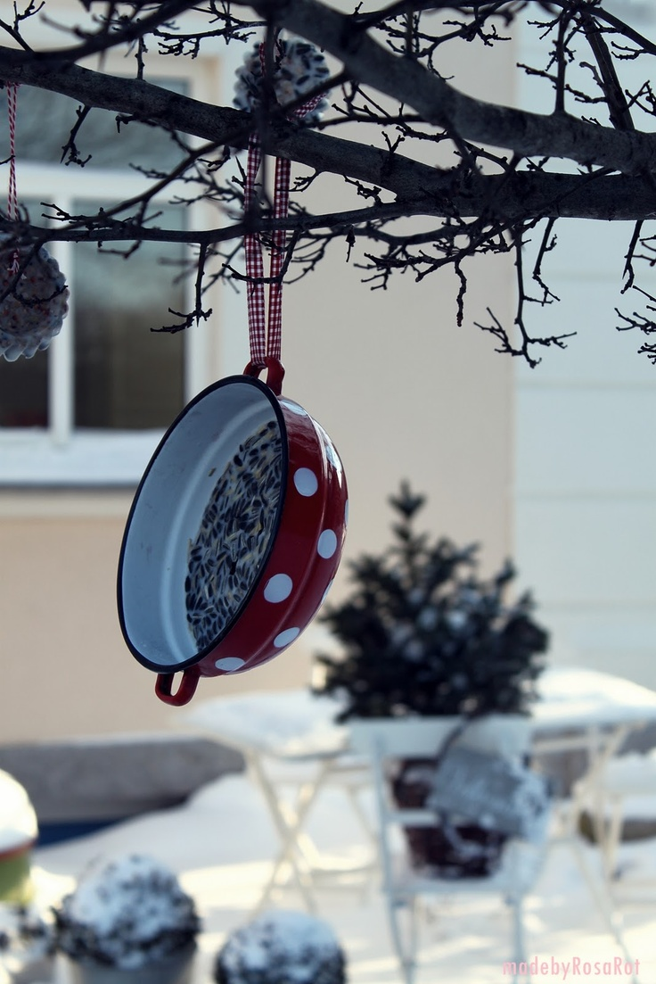 what a darling bird feeder