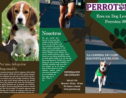 """Check out new work on my @Behance portfolio: """"Brochure Perrotón Madrid 2016"""" http://be.net/gallery/53839091/Brochure-Perroton-Madrid-2016"""