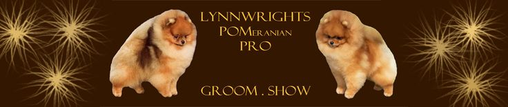 Lynnwrights POMeranian PRO App | Find it at the APPLE and GOOLE PLAY Stores NOW!