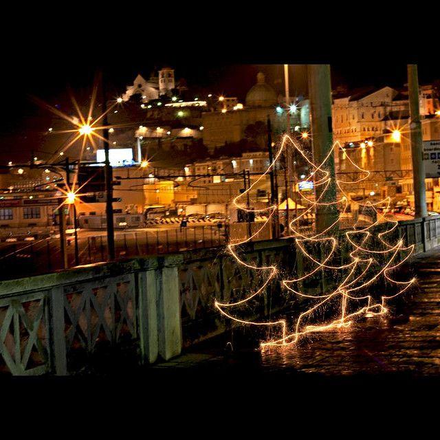 Signes De Lumière - three little xmas light trees - christmas - light painting - light art - photography - 29/11/2009