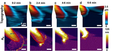 Atomic force microscope advance leads to new breast cancer research | Amazing Science | Scoop.it