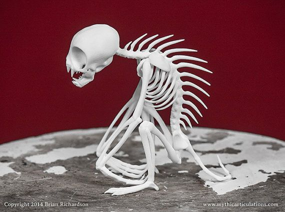 Chupacabra Skeleton 3D Print Taxidermy by MythicArticulations