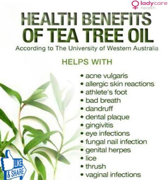 Top 10 Tea Tree Oil Benefits for Your Skin - treeoilpot.com