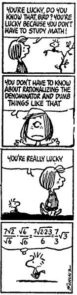 You're lucky! You don't have to know about rationalizing the denominator! #Radicals #Peanuts