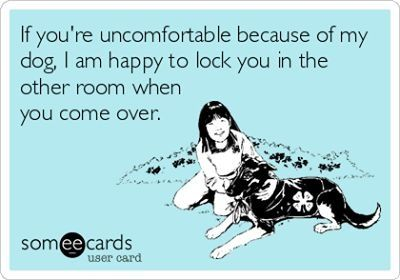 Lol #dog #quotes