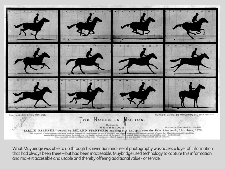 In 1877, Leland Stanford settled an argument about whether racehorses were ever fully airborne: he paid photographer Eadweard Muybridge to prove it photographically. The resulting photo, the first documented example of high-speed photography, clearly showed the horse airborne.  Once a horse reaches full speed it is beneficial to have thin legs that can be quickly moved in front for the next step of the run. Thin legs are common to many fast running species.