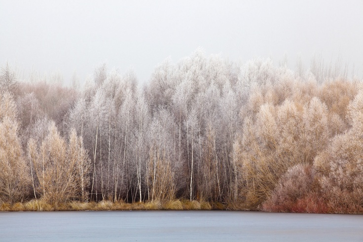 Alessandro Cerutti Photographer // | Frozen Lake