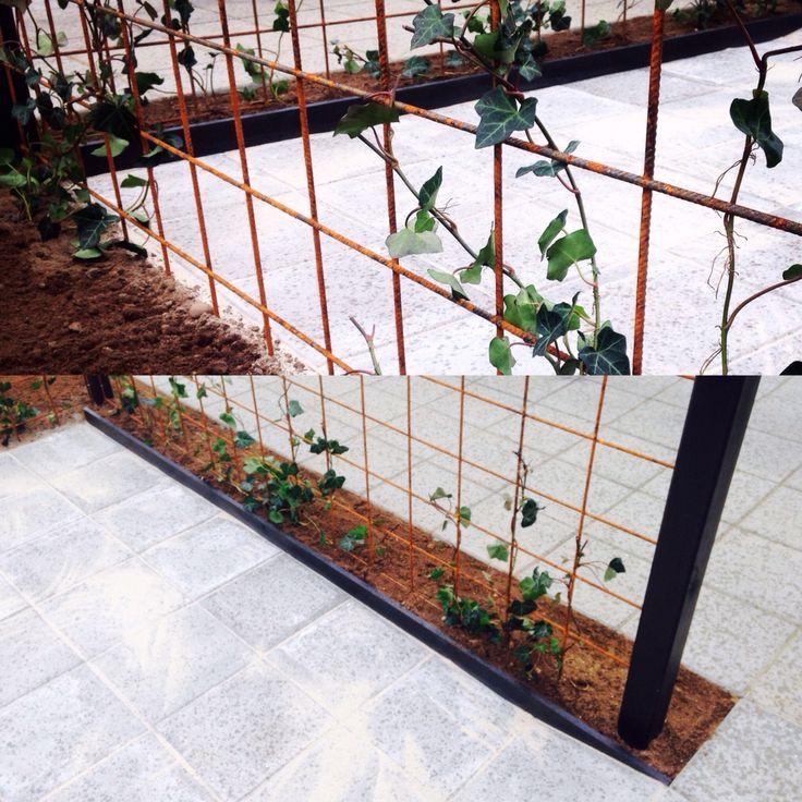 Nissens forhave #frontyard #gardenideas #rionet #efeu