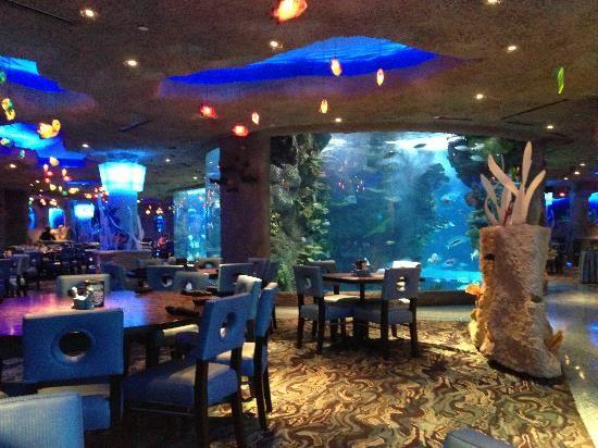 aquarium+restaurant+nashville | Aquarium Restaurant: Nashville, TN inside restaurant. Best fish tacos!