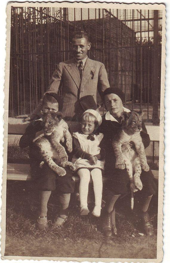 Vintage Photo Family photo Lion photo  ZOO photo  Vintage