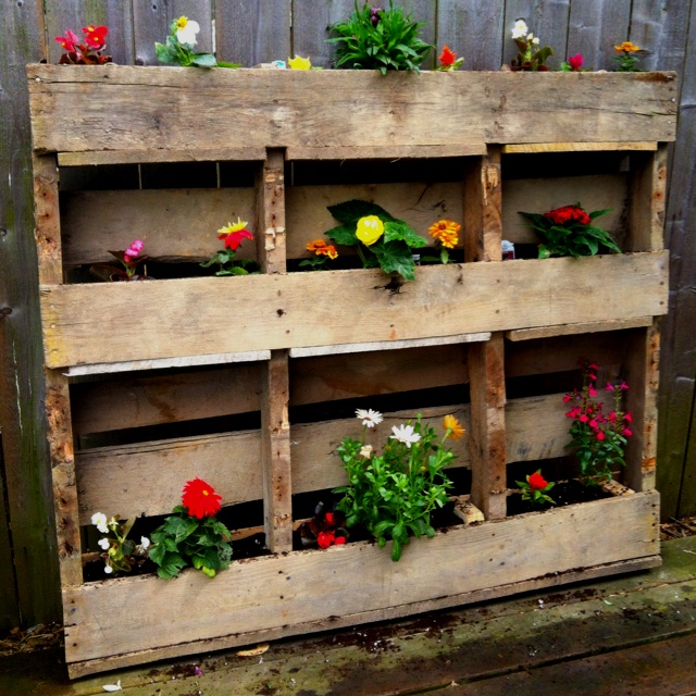 Pallet flower box. All wood used from the pallet! So cheap, so easy & quick!