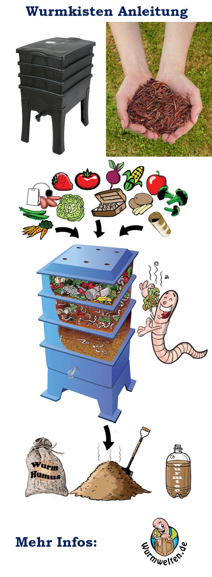 Es bedarf nur einiger Kompostwürmer und ein wenig Biomüll um den Wurmkoomposter einzurichten