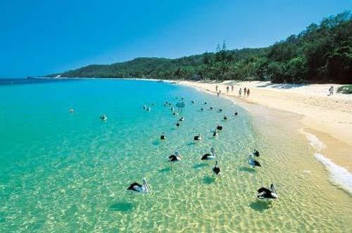 Moreton Island (Moreton Bay - Brisbane), Australia