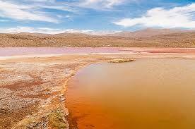 Resultado de imagen para laguna amarilla - CHILE