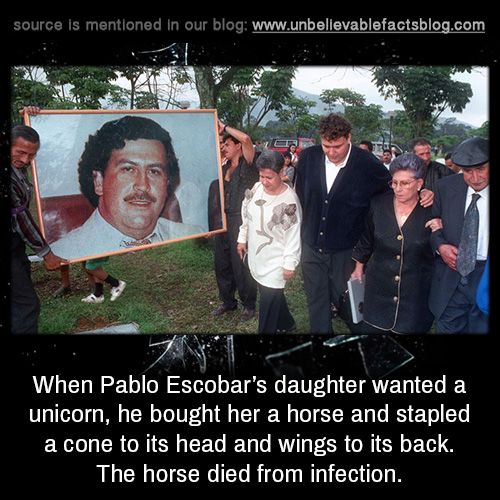 When Pablo Escobar's daughter wanted a unicorn, he bought her a horse and stapled a cone to its head and wings to its back. The horse died from infection.
