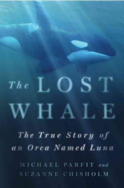 The Lost Whale: The True Story of an Orca Named Luna (Hardcover)