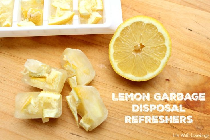 Lemon Garbage Disposal Refreshers...so easy!