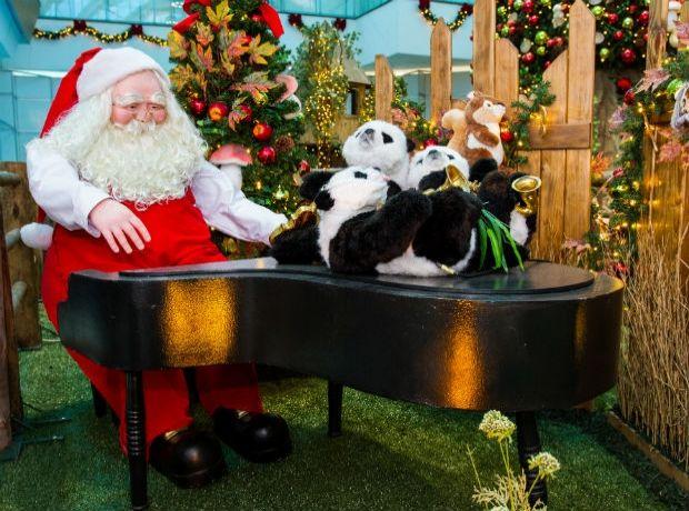 Bichos, música e interatividade no Natal do Tacaruna - NE10