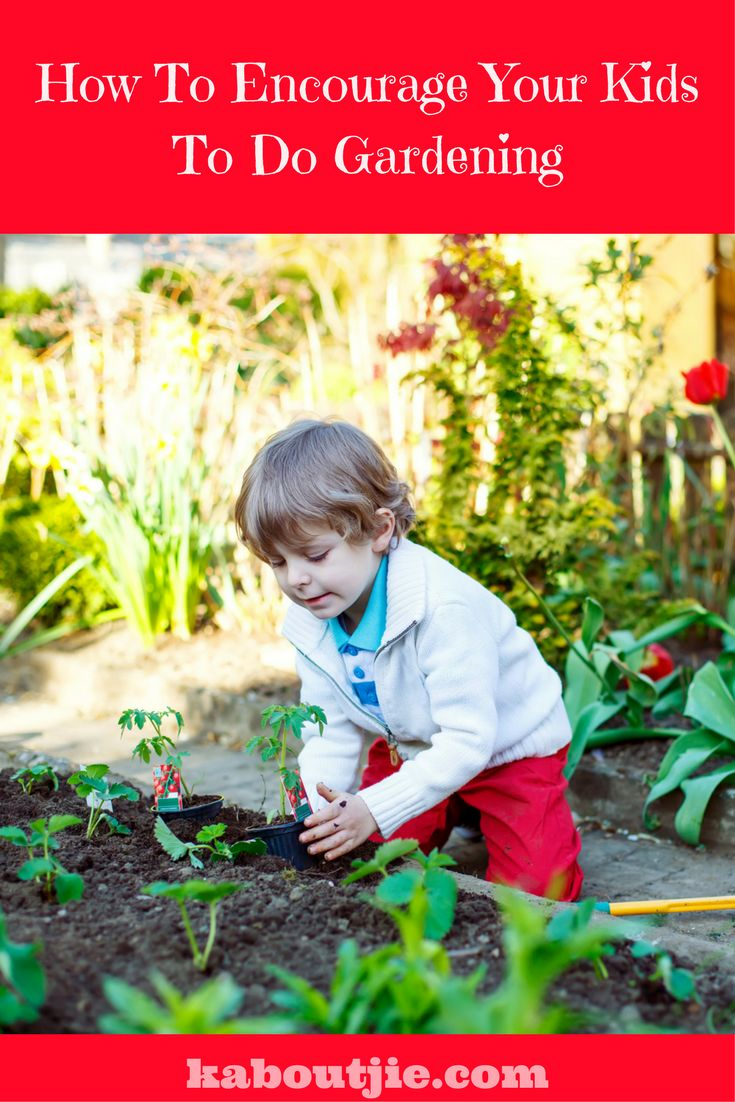 Gardening is so good for children, it comes naturally to them and being outdoors in nature is so beneficial. Here are some ways to encourage your child to garden and will teach children gardening.   #GuestPost #GardeningWithKids #TeachChildrenGardening #Gardening