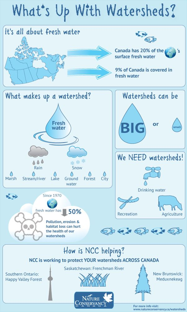 nature conservancy watersheds infographic clean water conservation should be everyone. Black Bedroom Furniture Sets. Home Design Ideas