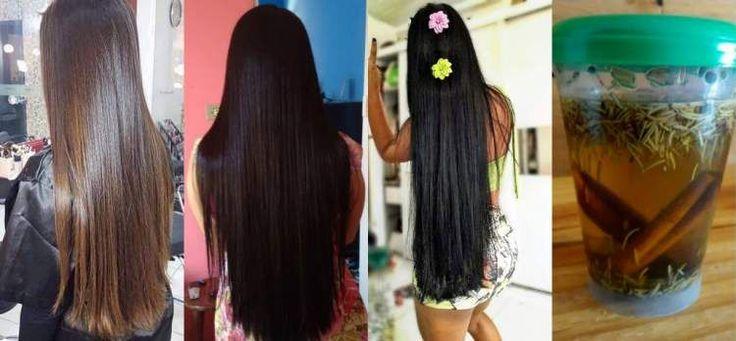 Aprenda fazer o shampoo caseiro de alecrim com canela e cravo. Essa poderosa receita caseira fará seu cabelo crescer bem mais rápido sem queda dos fios.