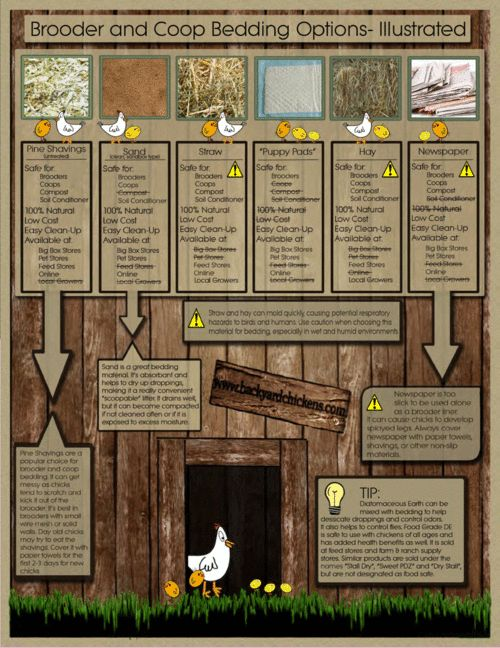Bedding Article - A Quick Guide to Common Bedding - #HowToRaiseChickens www.FreeHenHousePlans.net